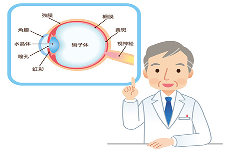 高度近视的矫正和治疗有什么方法?