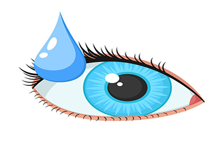 总书记强调:共同呵护好孩子的眼睛!
